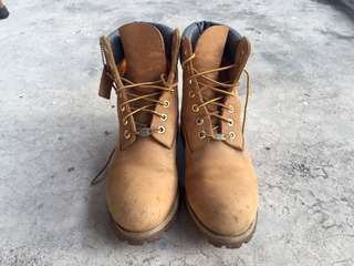 Timberland Wheat 6 inch Boot