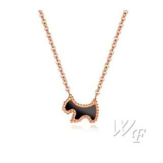 Titanium steel necklace TN137