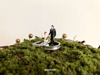 Miniature Figurine wedding couple Terrarium *special edition