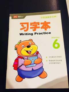 P6, Chinese assessment book
