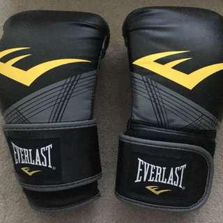Everlast Boxing Gloves 12 oz ProStyle