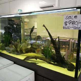 6ft aquarium tank n cabinet