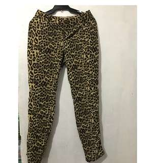 Leopard Pants/slacks