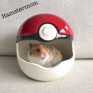 Pokemon Ball Ceramic Hamster Hideout Toy House