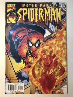 Peter Parker Spider-Man # 21