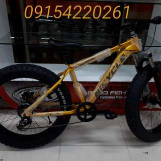 Alloy Yellow Fat Bike