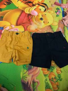 Poney Boy Shorts