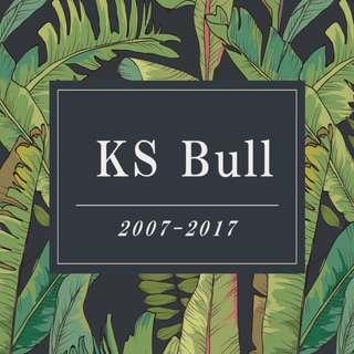 RJC KS Bull (pdf)