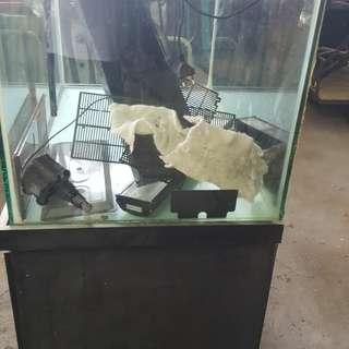 Fish Tank 3x2