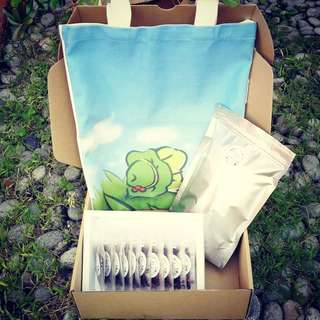 Travel Frog Special Tea Gift Box