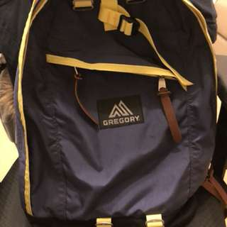 Gregory 22L Navy-yellow 95% new