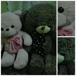 Couple Teddy Bear :)