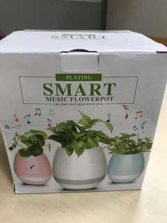 BNIB Music Pot
