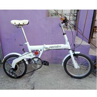MY PALLAS FOLDING BIKE (FREE DELIVERY AND NEGOTIABLE!)