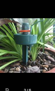 Automatic self watering drip irrigation house plant