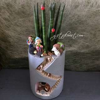 This Month Special: Succulent In Hedgehog Planter Pot