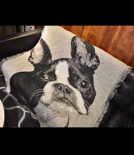 French bulldog carpet