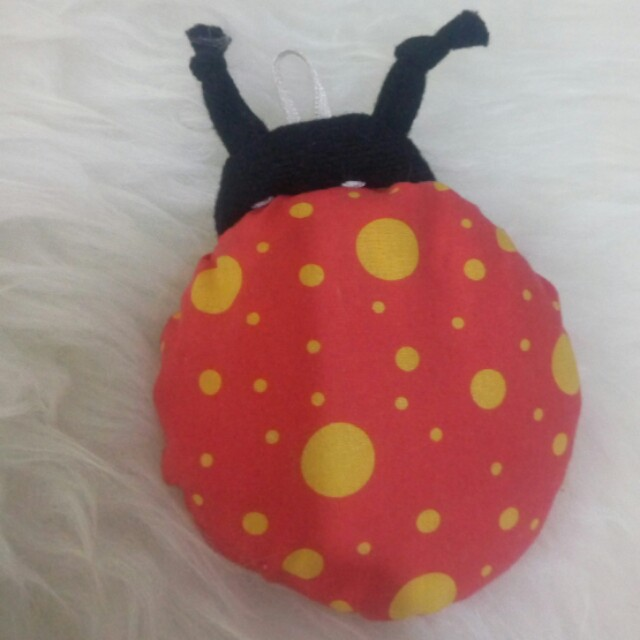 Cermin lady bug