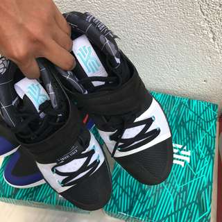 Nike Adidas Gucci Vans Yeezy Kobe Lebron Kyrie Kd