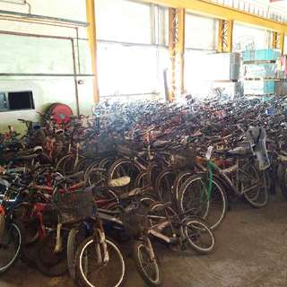 Kids & Adult Bicycles for sale