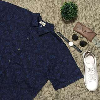 Blue with Palm Patterned Button Down Polo
