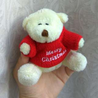 Mini Teddy Bear Plush