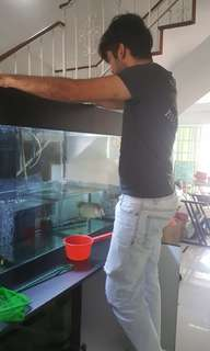 Fish Transfer Fish Tank Movers Tank movers
