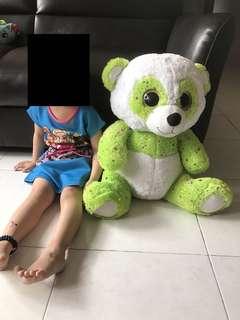 Teddy green / white bear