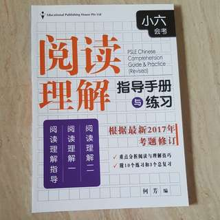 PSLE Chinese Primary School Chinese Comprehension Book (Primary 6) 小六会考阅读理解指导手册与练习