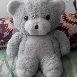Pre❤ Teddy Bear