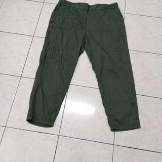 Ann Taylor( LOFT )Casual Pants