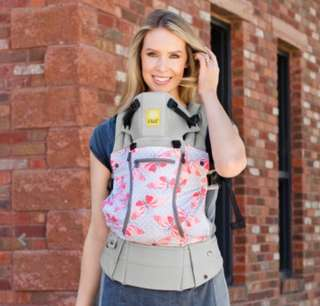 Lillebaby Baby Carrier (Complete All Seasons 3D Mesh) - Catch Me If You Can