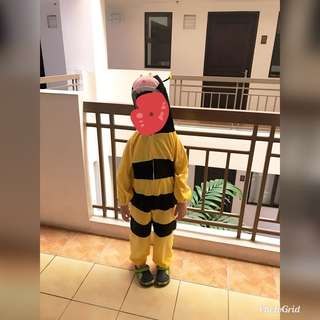 Insect costume
