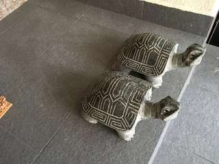 Full stone sculpture (a pair of turtle)