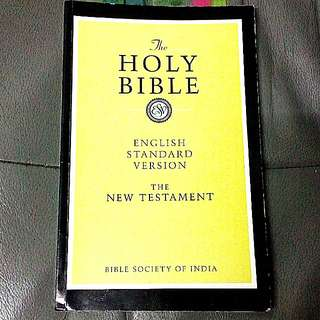 The Holy Bible (260 paperback)