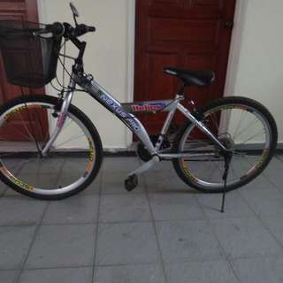 Nexus Pro Mountain Bike