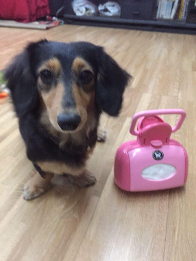愛麗絲寵物夾便器 鏟屎器 撿狗狗大便