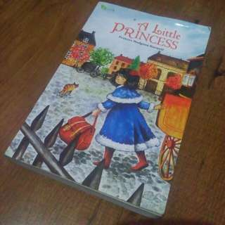 Novel-A little princess