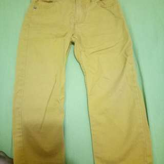 Long Pants yellow