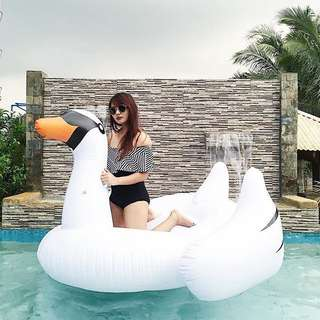 Giant Swan Inflatable