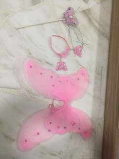 Fairy wings set