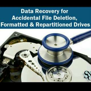 Low Cost Data Recovery Service