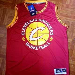 NBA Practice Jersey Cleaveland Cavalier
