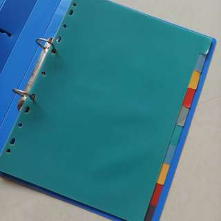 Ring Book Index (10 Dividers)