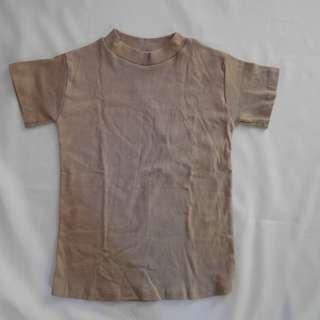 Turtleneck blouse (Capri top in nude)