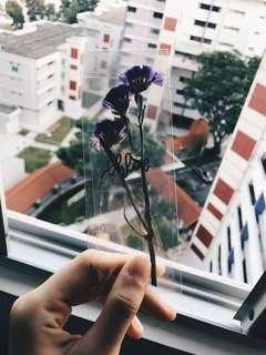 Custom Floral Bookmarks