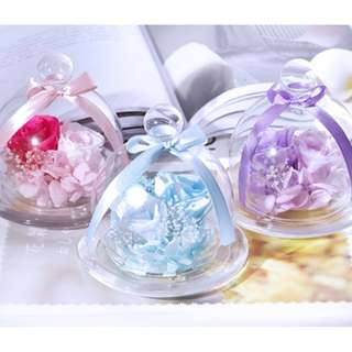 The best Gift Romantic Endless Preserved Roses Flower in glass dome  玫瑰永生花