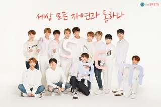 The Saem Pre-Order (model-Seventeen)
