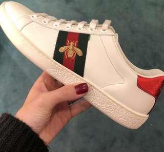 Gucci 波鞋