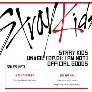 STRAY KIDS MD